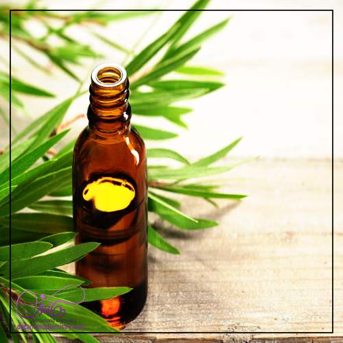 قیمت روغن درخت چای برای جوش _ دکاموند شیمی